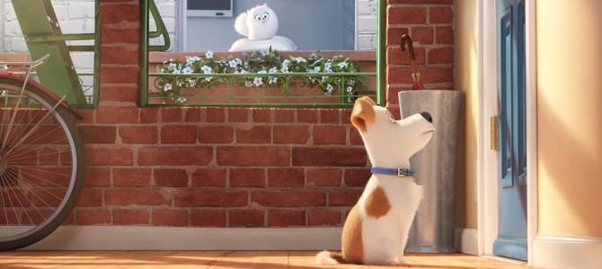 W kinie: Sekretne Życie Zwierzaków Domowych