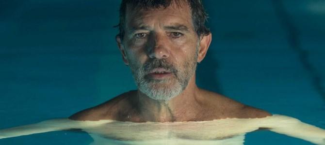 W kinie: Ból i Blask (Cannes)